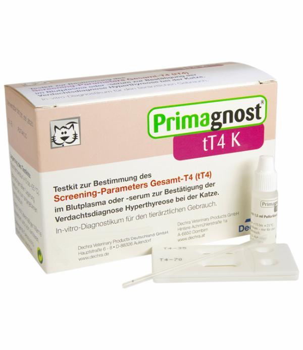 Thyroxin Vergessen